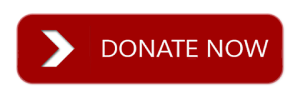 Donate-Now-Button